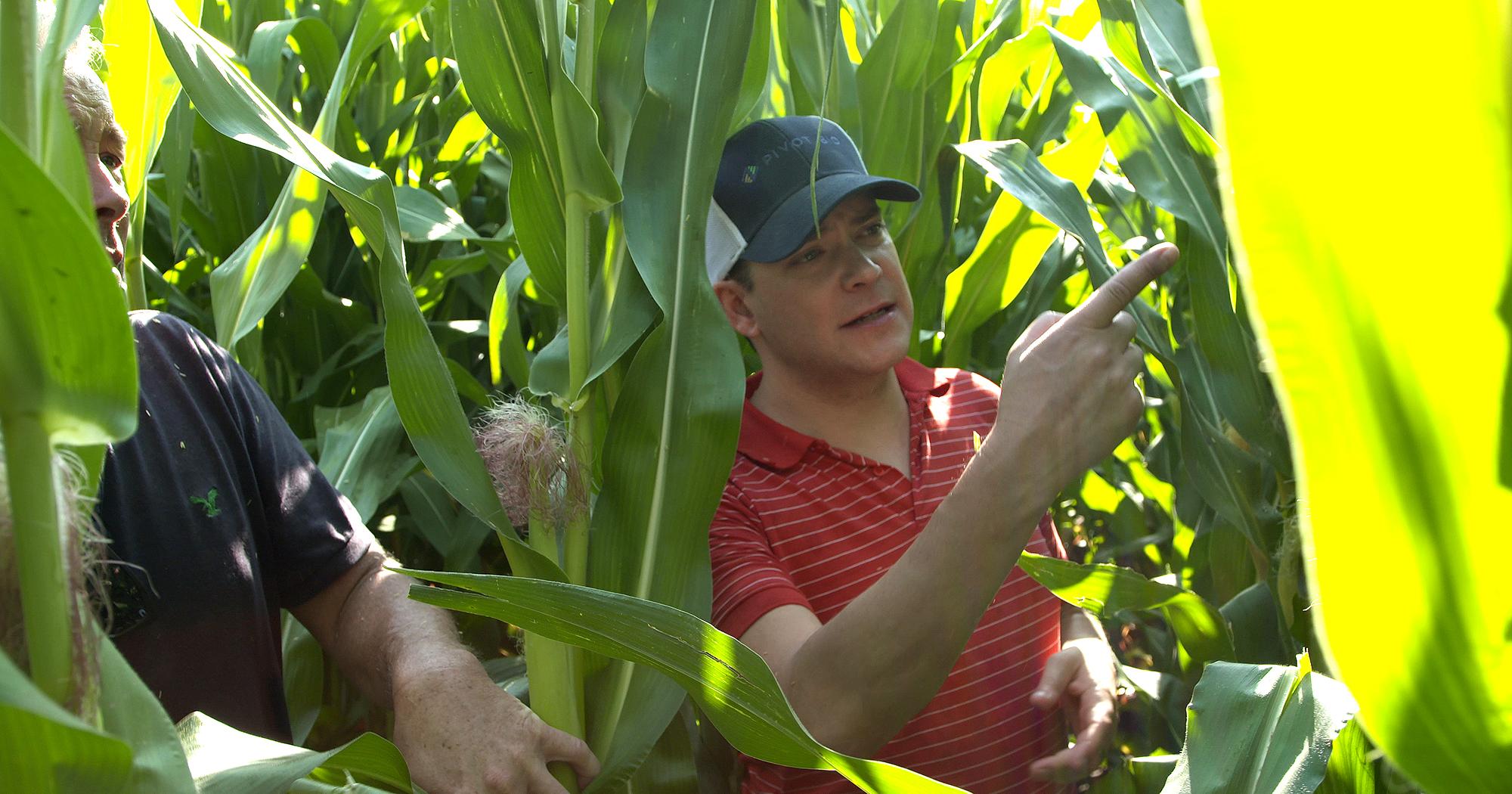 Pivot Bio co-founder and University of Iowa graduate Karsten Temme in a cornfield