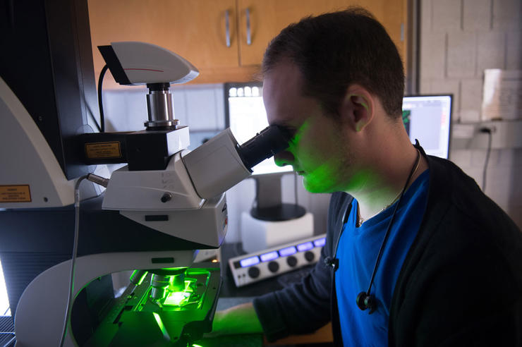 Students working in Joshua Weiner's lab in the Biology Building