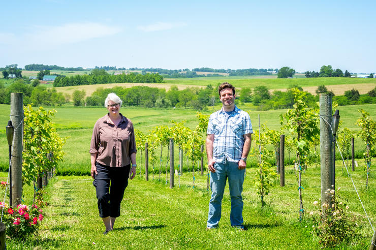 University of Iowa faculty member Kristy Walker and Iowa graduate student Matt Bare at a vineyard near Iowa City